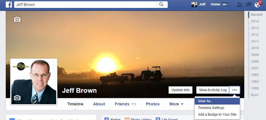View As Facebook Profile setting